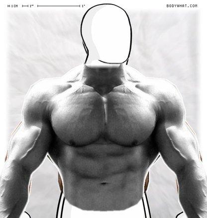 Jay Cutler vs  Arnold   BodyWHAT