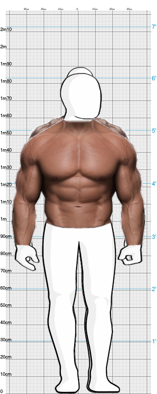 THE ROCK - Dwayne Johnson vs  Arnold Schwarzenegger | BodyWHAT