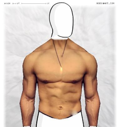 Muscle Morphing