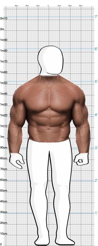 THE ROCK - Dwayne Johnson vs. Arnold Schwarzenegger | BodyWHAT